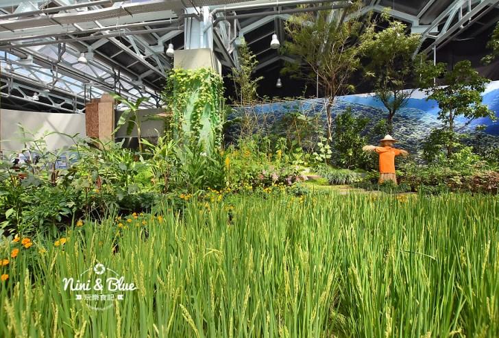 45597740822 882de46c65 b - 台中花博外埔園區,將水稻農田搬到展覽館內,摩西分海超好拍