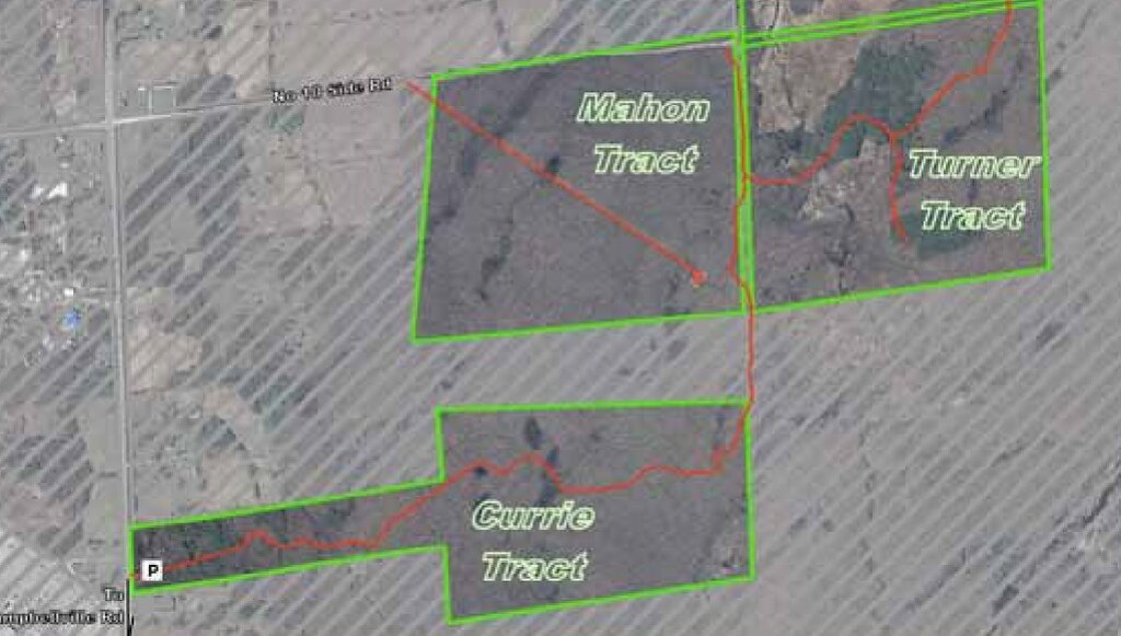 Halton Regional Forest Currie and Mahon Tracts
