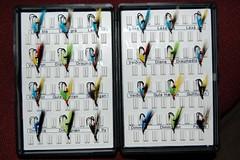Dodda-flugur, Doddi's flies
