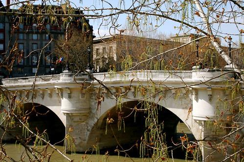 Pont Neuf through the trees