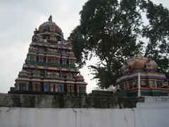 Vimanams