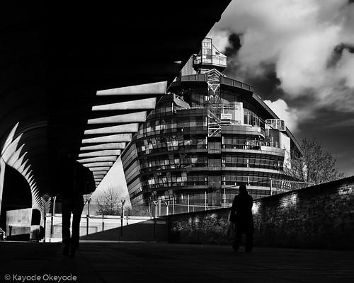 The London Ark