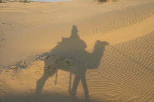 騎駱駝1-32自己的影�