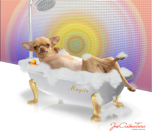 Mayita baño de tina