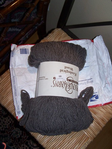 The mail man brought one more skein of Cascade Eco...