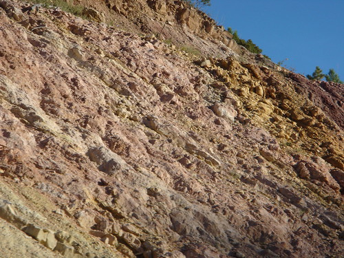 Sandstone closeup