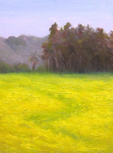 Mustard Grass meadow