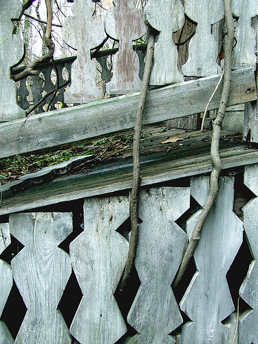 Margaret's porch 1