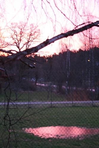 morning 25 jan