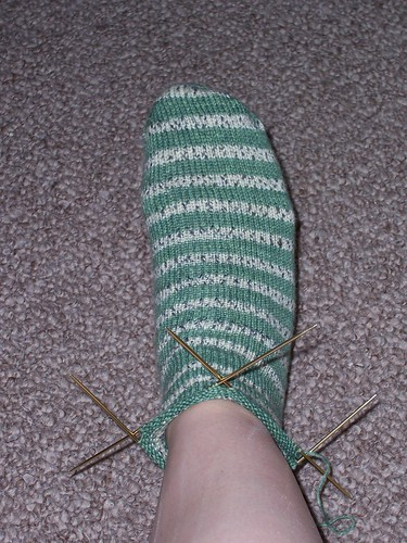 Poison dart frog sock - top elevation