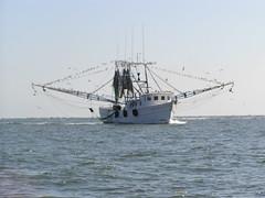 Charleston Harbor, near the jetties