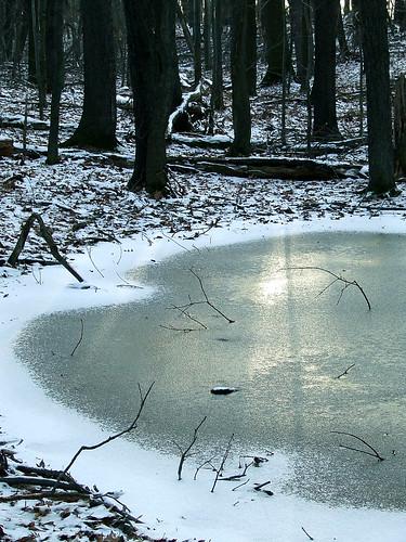 ephemeral pond in winter 2
