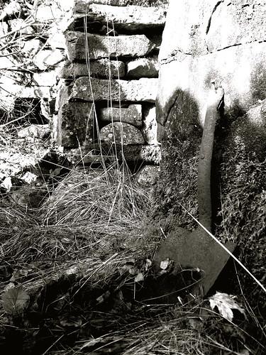 Forgotten Village 2