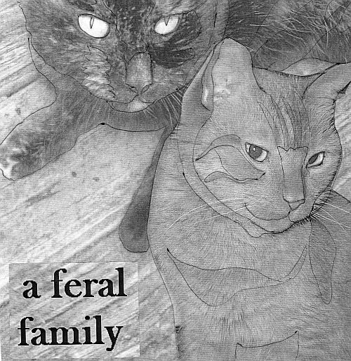 a feral family cover
