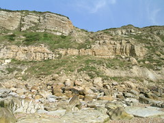 east hill cliffs_20040724_aphillips_03.jpg