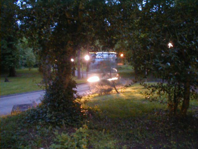 Dawn bus