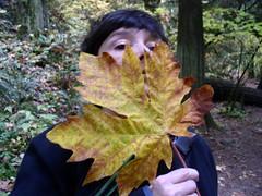 Vine-leaf maple mask
