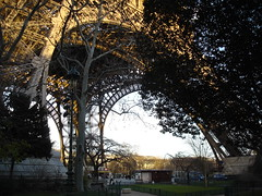 Eiffel Tower (4)