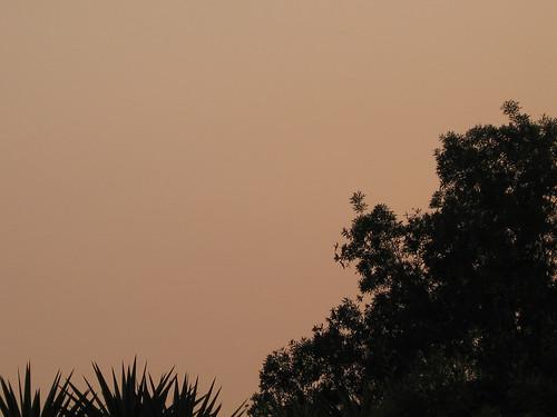 CA Fire Photo 01