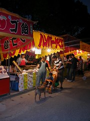 Fair Stalls, family and dog