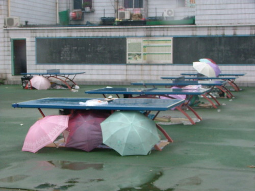 Ping Pong Shelter