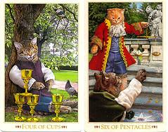 BBC cards for Loris