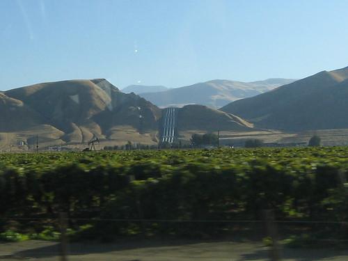 Day 12 - Aqueduct, Oil & Grapes