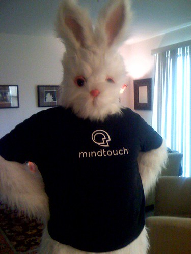 MindTouch Rabbit