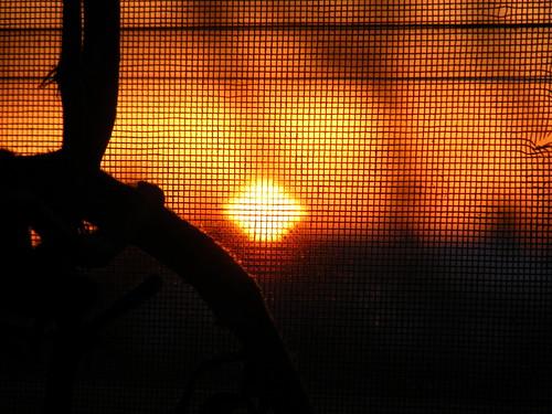 sunset through the screen