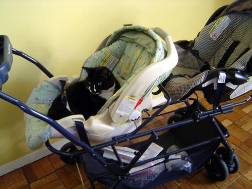 Gawain in stroller