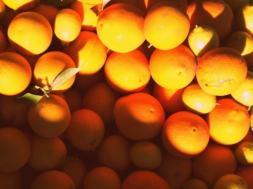 Orange season.