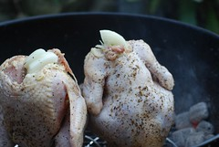 chooks in the grill