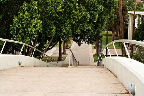 palmwalkbridge