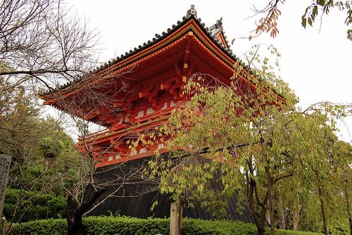 Ninna-ji Temple 03