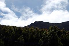Mount Wellington under clear skies