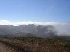 Fog on Fox Trail