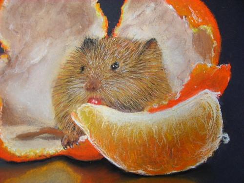 秀珠_藏在剝皮橘��的小老鼠2