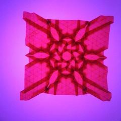 Flower Diamond Tessellation Backlight Reverse