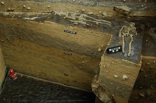 Chih Shan-Yen Prehistoric Site [芝山岩遺址]