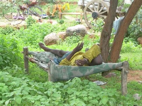 Durmiendo la mona en el camino de Orcha