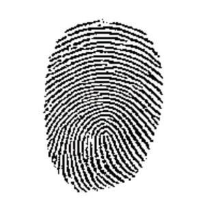 Counterfeit Chips Baffled By Fingerprint Keys