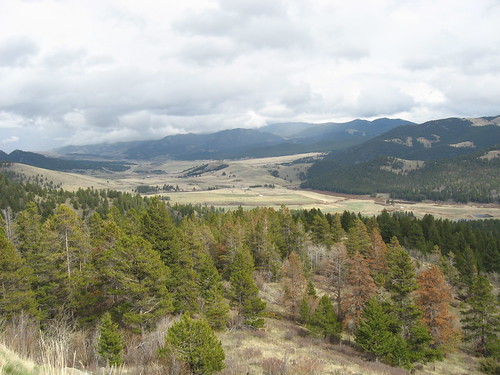Scenic View Near the Continental Divide on Highway 12
