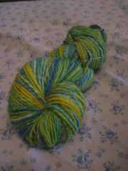 164 yards merino in colorway frog pond