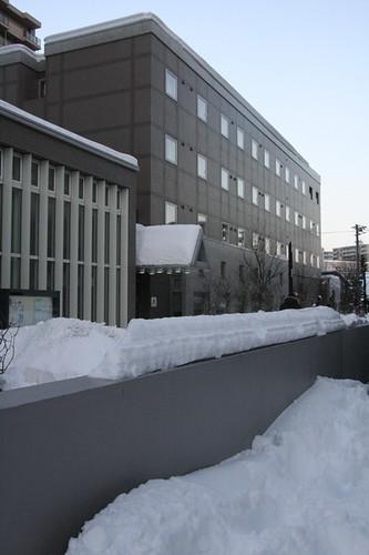 札幌國際青年旅館@ 海豚飛看世界:: 痞客邦