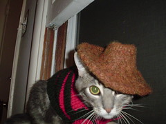 Paquito in costume