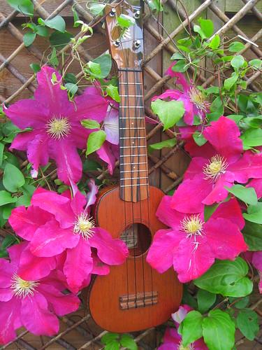 flowery ukulele