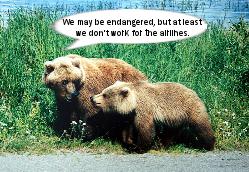 07_12_11 endangered