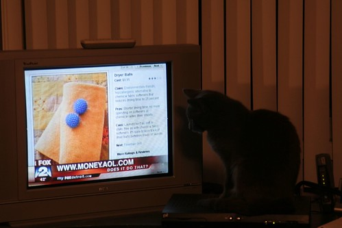 Willow watching TV
