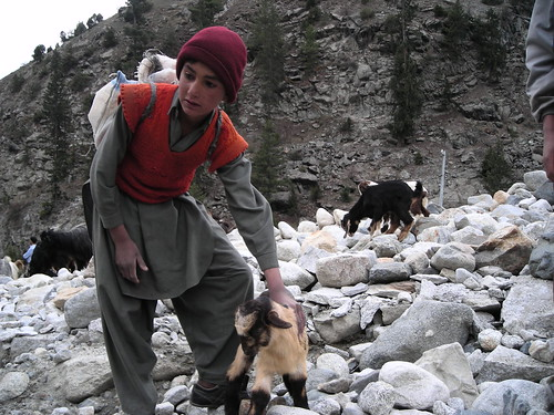 Naltar4 by Mirjee (away for a few days).