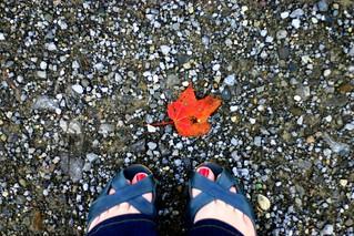 sandals in october